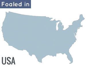 Foaled in the USA