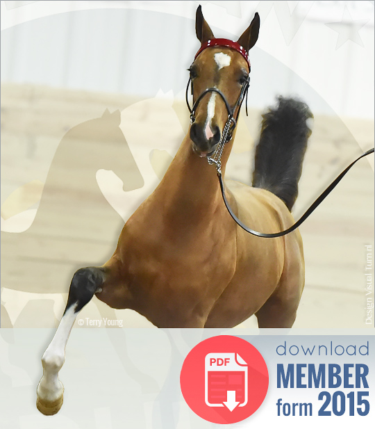 Download ADHHA Member Form