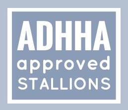 ADHHA approved stallions