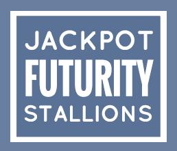 ADHHA Jackpot Futurity stallions