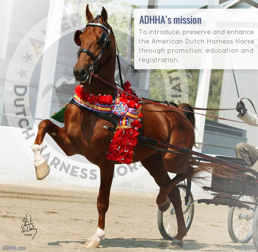 ADHHA mission logo