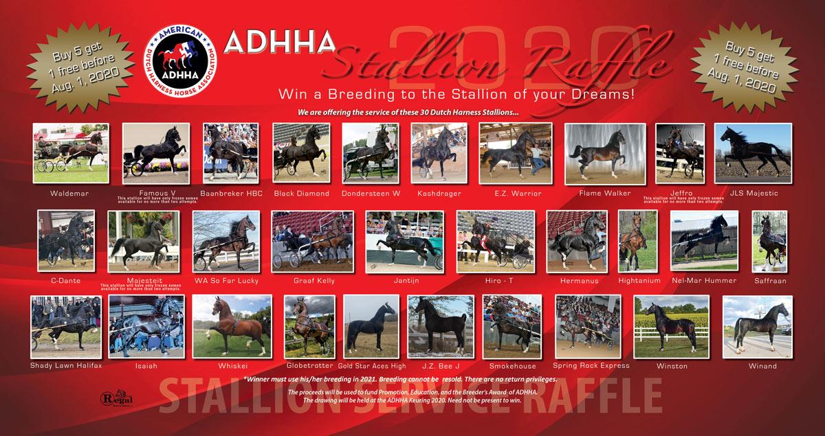 ADHHA_StallionServiceRaffle_2020