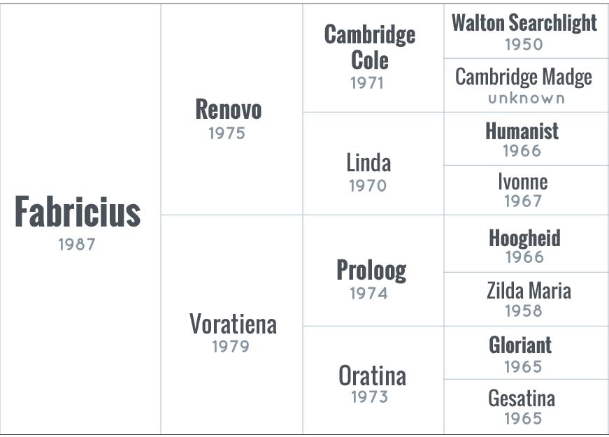 fabricius-pedigree-adhha