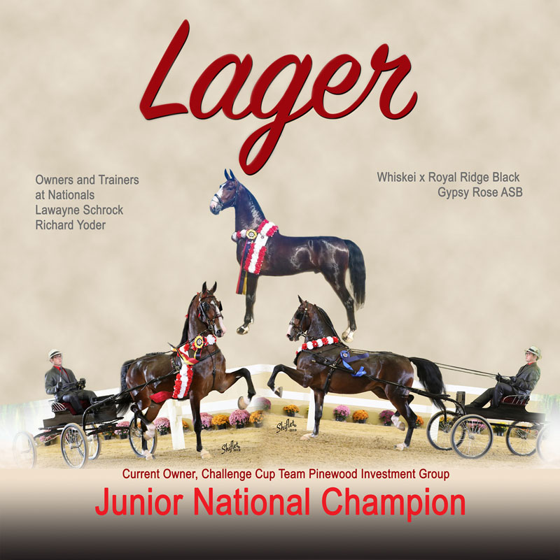 Junior National Champion