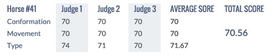 Score Keuring 2014 #41