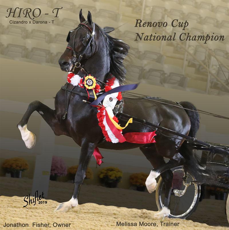 Renovo Cup National Champion
