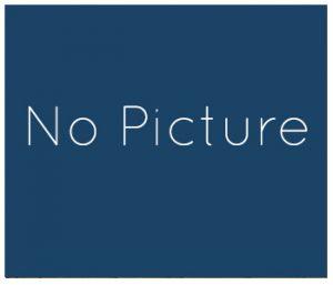 no-stallion-picture
