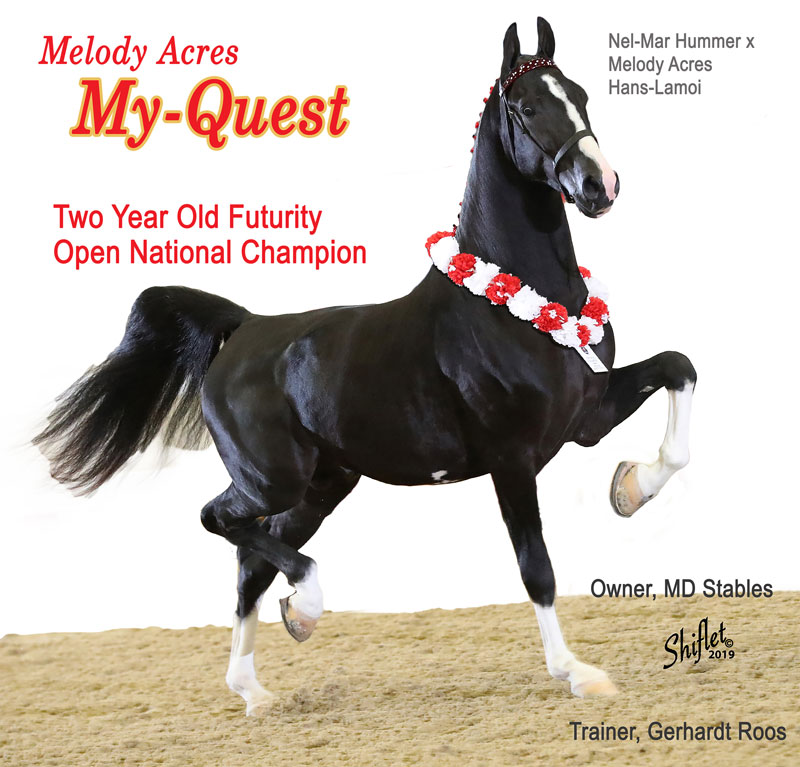 Two Year Old Futurity Open National Champion